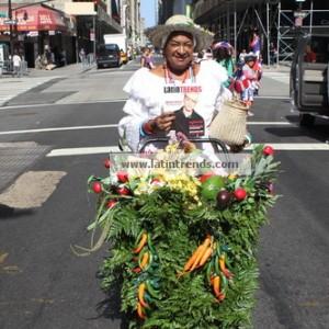 DR Parade 2012_3