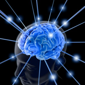 http://hplusmagazine.com/2012/07/20/how-the-brain-works/