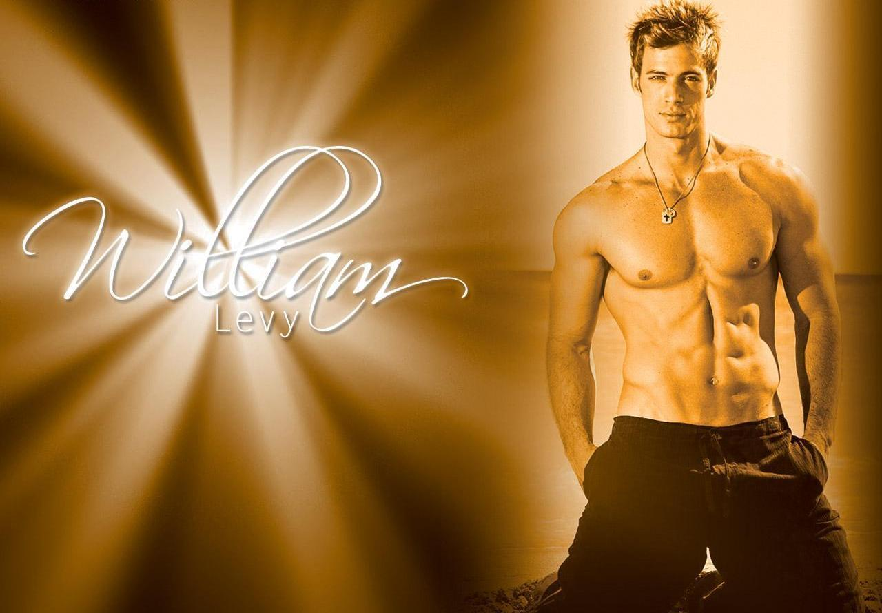 "Did William Levy's First Hollywood Role Get a ""D"" for Dud?"