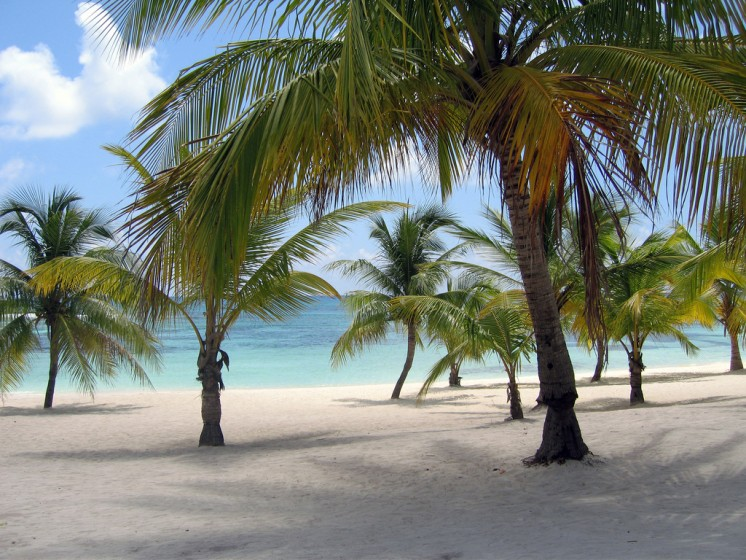 Isla Saona, Dominican Republic (Image via Dominican Republic Real Estate)