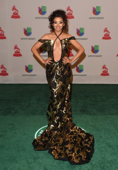 15th+Annual+Latin+GRAMMY+Awards+Arrivals+SmELESOkmWil