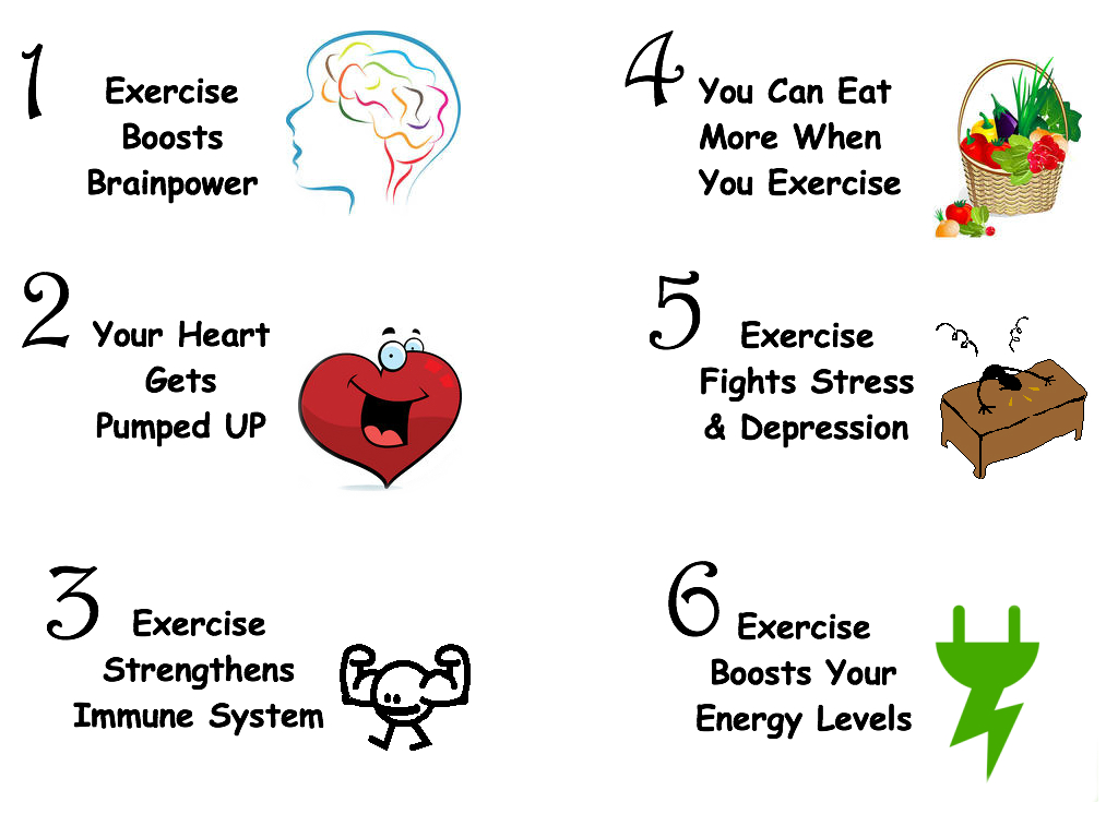 6 Fitness Fun Facts II